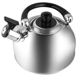 Чайник со свистком Webber BE-0526, изображение 2