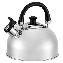 Чайник со свистком Webber BE-0528