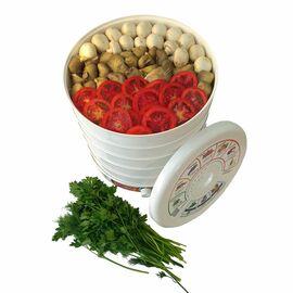 Сушилка для фруктов и овощей Renova DVN31-500/5 фото, изображение 7
