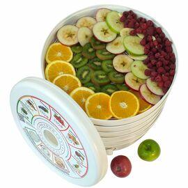 Сушилка для фруктов и овощей Renova DVN37-500/5 фото, изображение 3