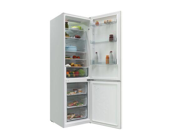 Холодильник двухкамерный Candy CCRN 6200W фото, изображение 5