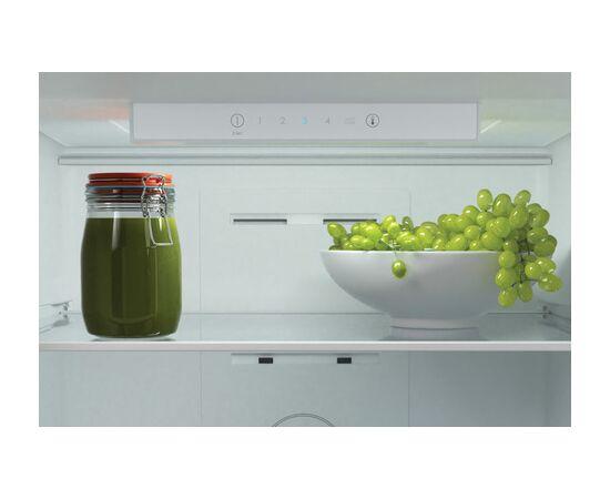 Холодильник двухкамерный Candy CCRN 6200W фото, изображение 7